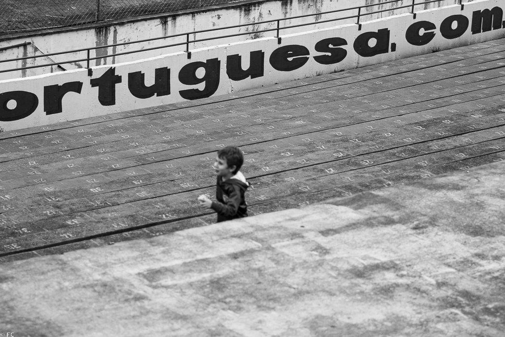 Torcida da Portuguesa