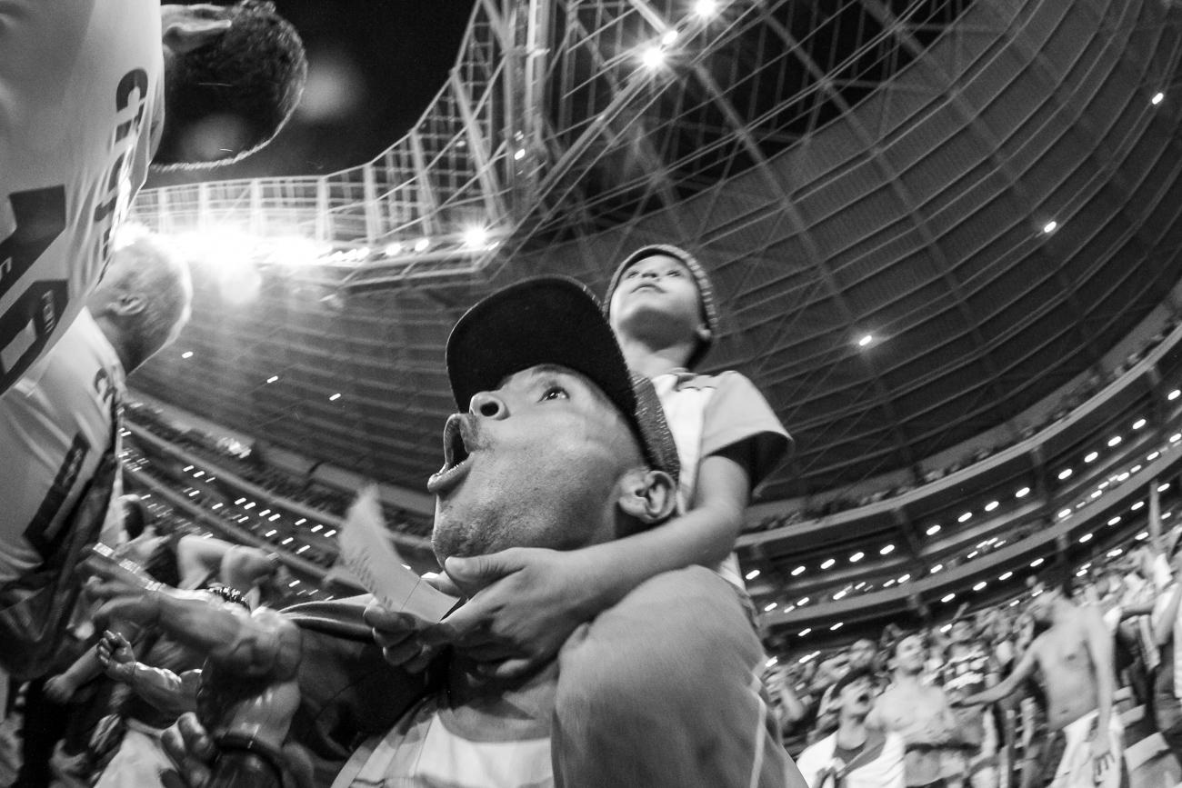Fotos da torcida do Palmeiras