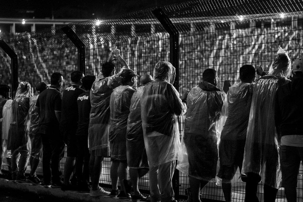 torcida Palmeiras x Santos